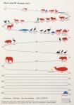 animal-life-20110523-143553