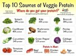 Top-10-Sources-of-Veggie-Protein